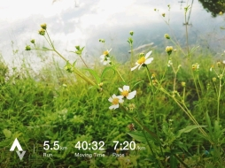 วิ่งวันที่ 12