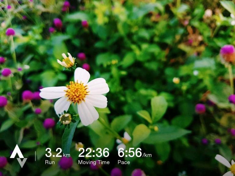 วิ่งวันที่ 30