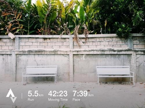 วิ่งวันที่ 7